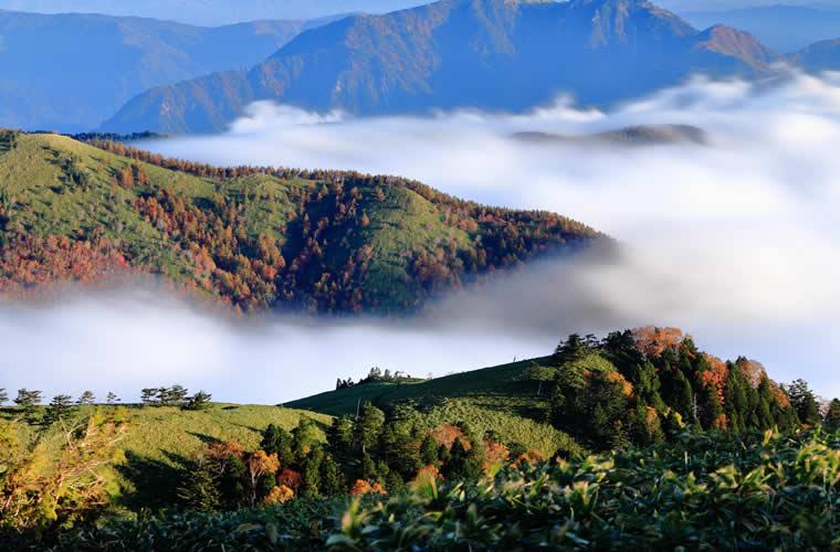 「長野県 雲海Harbor」的圖片搜尋結果