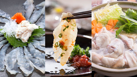 料理評価4.5以上!冬の味覚 「ふぐ付プラン」の人気温泉宿