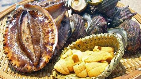 玄界灘の海鮮料理