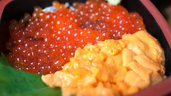 海膽鮭魚卵蓋飯