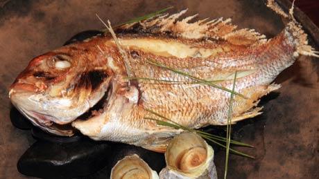 鳴門鯛料理