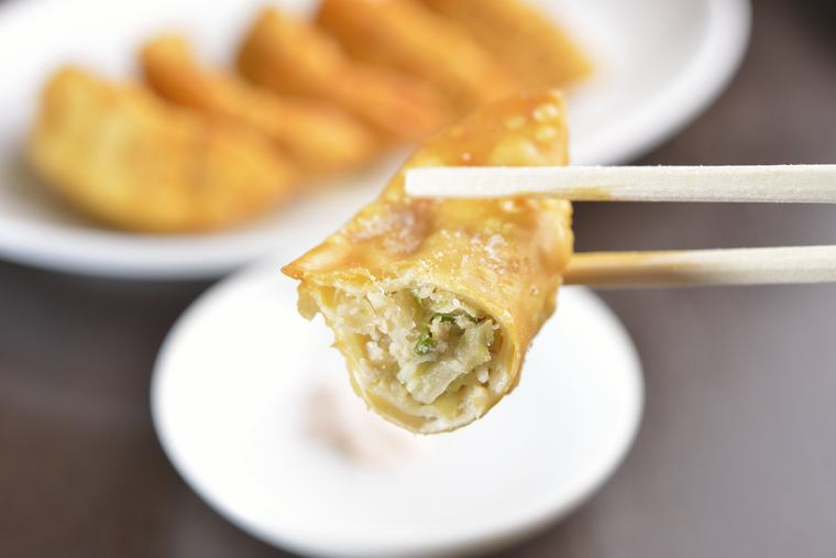 宇都宮餃子 揚餃子