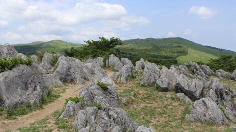 壮大な大地を1日楽しむ!日本最大級のカルスト台地・秋吉台と地下鍾乳洞・秋芳洞