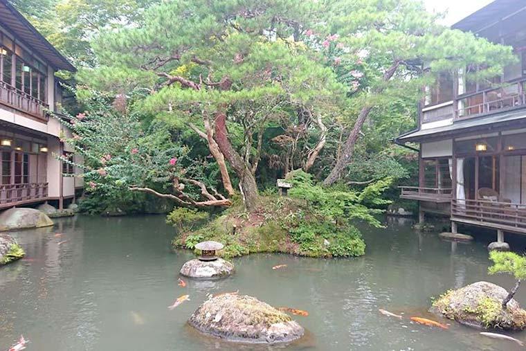 新井旅館 池