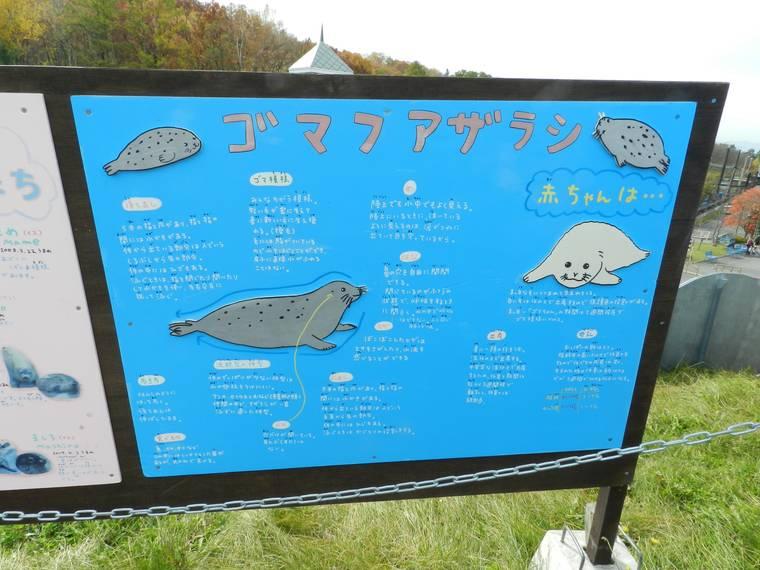 北海道 旭山動物園 イラストパネル