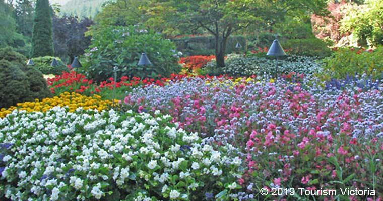 Butchart Gardens / ブッチャートガーデン