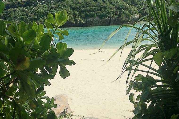 シリーズ「がん患者さんが見つけた旅の喜び」 石垣島