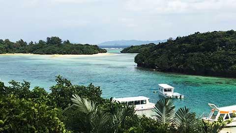 がん治療の合間に家族と沖縄旅 南国の緑に感じる生命の息吹と生かされた意味