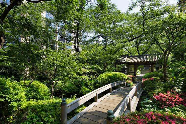 グランドプリンスホテル新高輪 クラブフロア 日本庭園