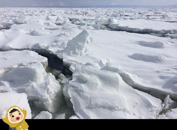 流氷がっつり