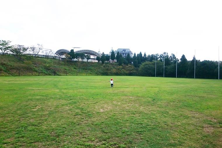 芝生が広がる多目的広場