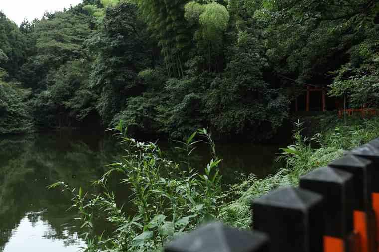 稲荷山の新池(谺ケ池)