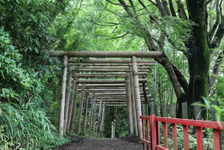 大日本大道教の竹の鳥居