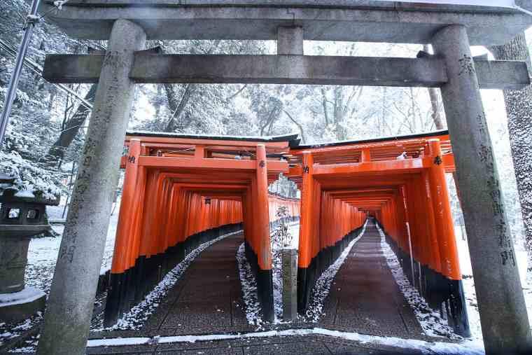 伏見稲荷大社 冬