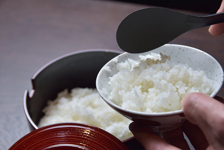 下呂温泉 小川屋 飛騨コシヒカリ