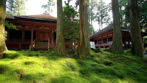 甲子園500個分の広さ!「比叡山延暦寺」の見どころと回り方