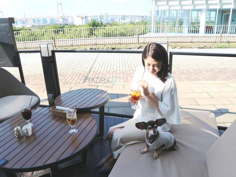 ヒルトン東京お台場 「ワンニャイトステイ」レストラン