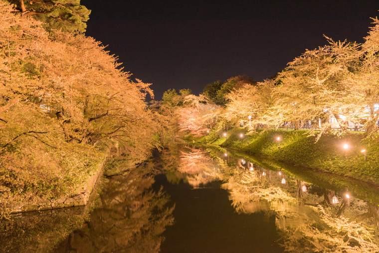弘前公園 夜桜 さくらまつり