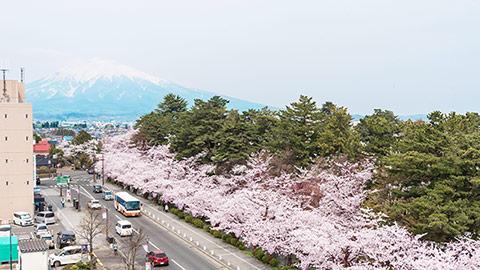 弘前観光おすすめ女子旅!モデルコースに桜や名物グルメも