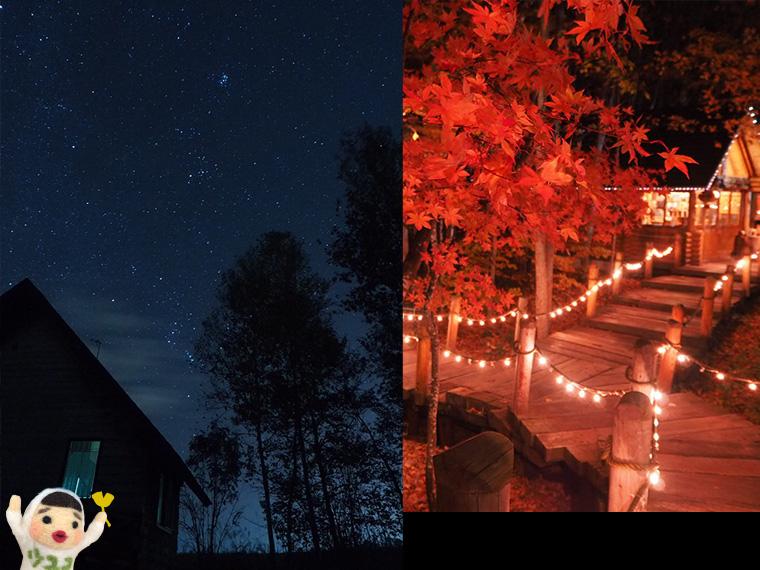 富良野の夜