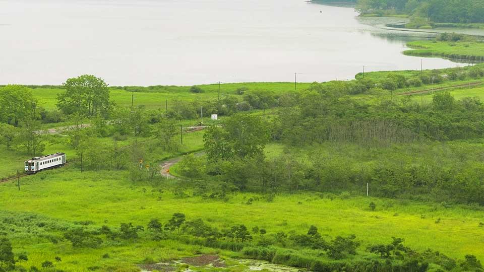 【道東旅行】釧路・摩周湖・知床をレンタカー無しで回る3日間