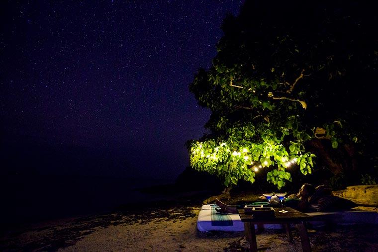 星降る夜のてぃんがーらピクニック