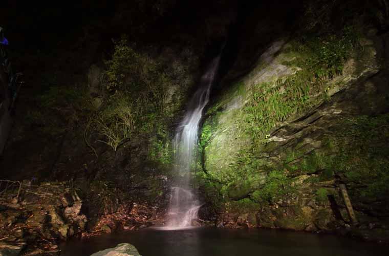 琵琶の滝 ライトアップ