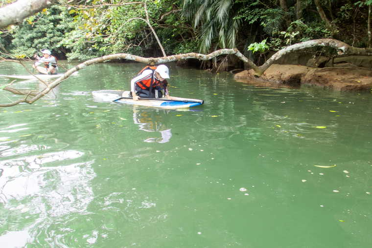 西表島 SUP・カヌー体験