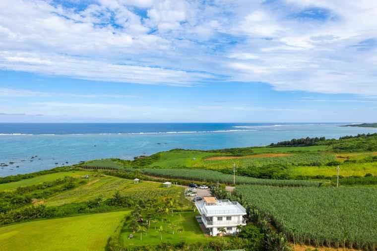 石垣島 のばれ岬観光農園