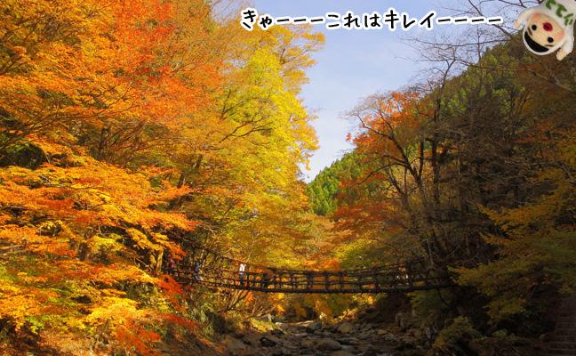 紅葉かずら橋