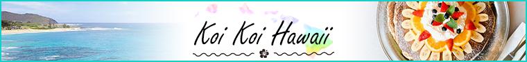 koikoihawaii_banner