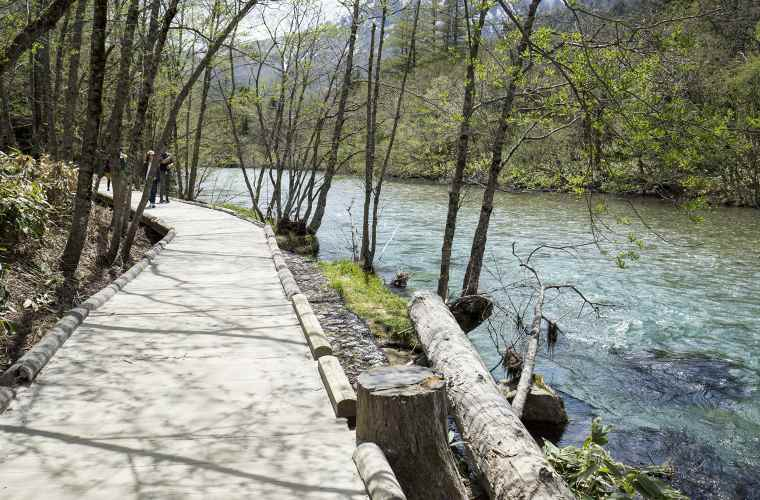 梓川沿いの木道