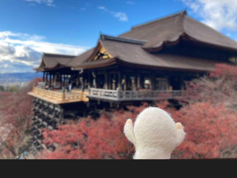 そうだ、今こそディープに京都を巡ろう