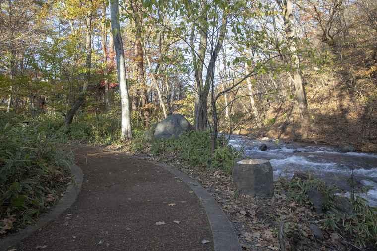 軽井沢星野エリア ウッドチップの遊歩道