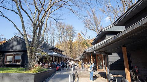 軽井沢星野エリアを子連れで満喫!グルメに温泉、自然の中のくつろぎ時間