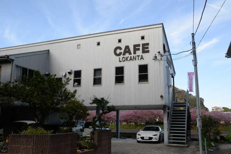 河津桜を眺めるカフェ「ロカンタ」