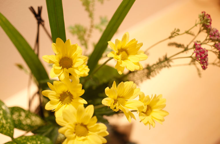 湯楽館内に生けられた花