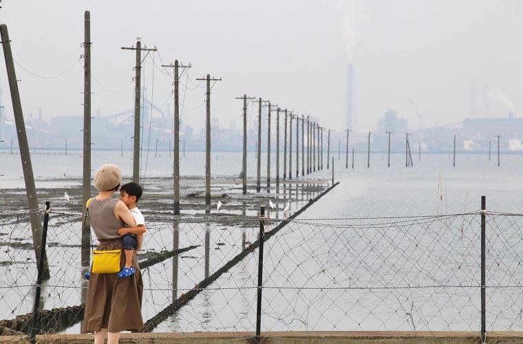 沖合いに向かって電柱が立ち並ぶ風景は幻想的