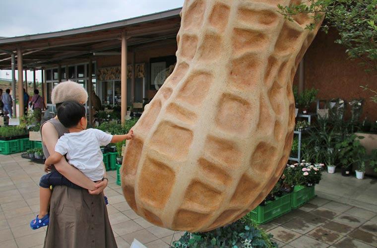 道の駅の前に置かれた大きなピーナッツのオブジェ