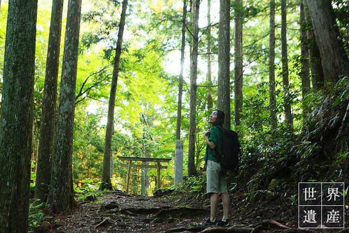 熊野本宮大社の神域の入口とされる発心門王子から古道歩きをスタート