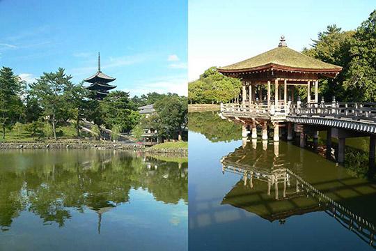 猿沢池(左)と浮見堂(右) 写真出典/今日の奈良公園