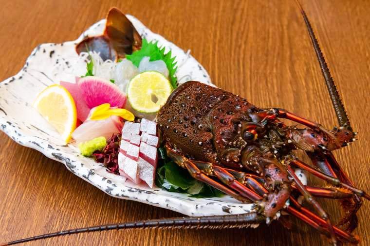 熊野古道 熊野倶楽部  晩御飯 伊勢海老、カンパチ、モンゴウイカ、トンボマグロの鮮魚