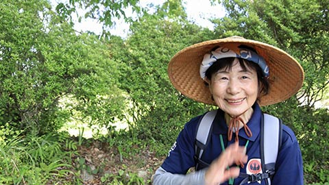 「熊野本宮大社」の参拝は熊野古道を歩いてこそ!