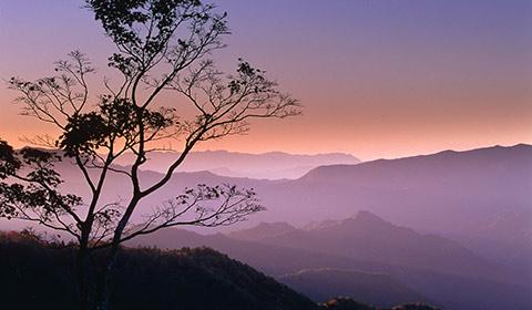 歩ける世界遺産「熊野古道」の魅力。5本の参詣道と見所を紹介