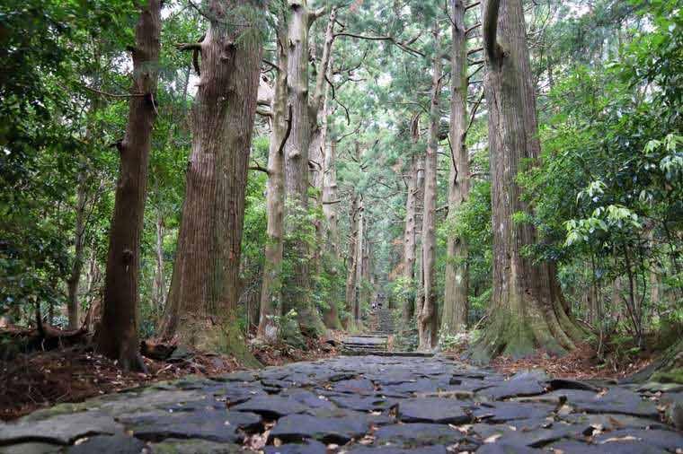紀伊山地の霊場と参詣道として世界遺産に登録されている
