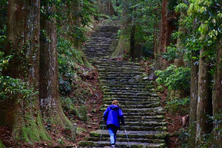 大門坂から熊野那智大社まで杉林や石段が続く