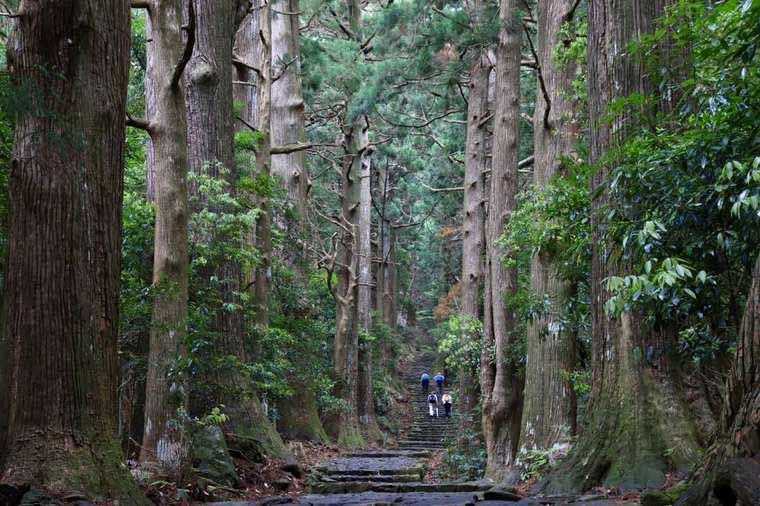熊野古道の天気は変わりやすい