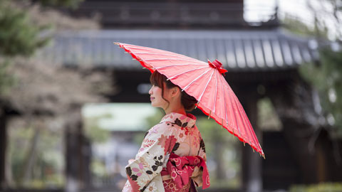 京都女性一人旅におすすめの観光スポット・カフェ・ごはん屋さん