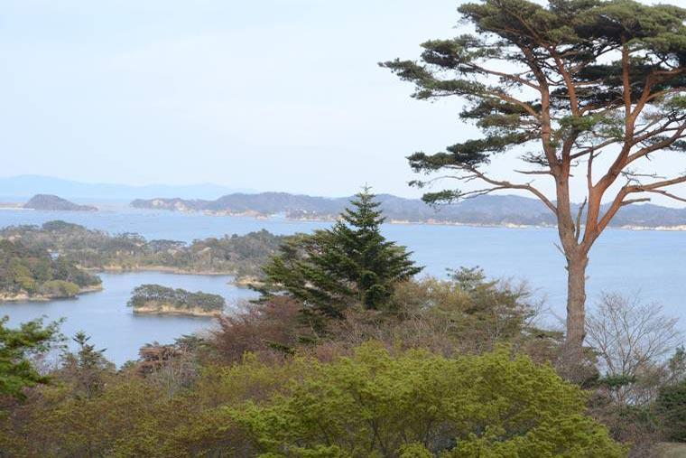 松島 展望台 西行戻しの松公園