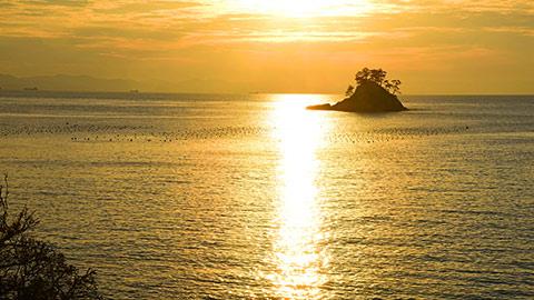 日本三景・松島の絶景とグルメを楽しむ!おすすめ観光モデルコース